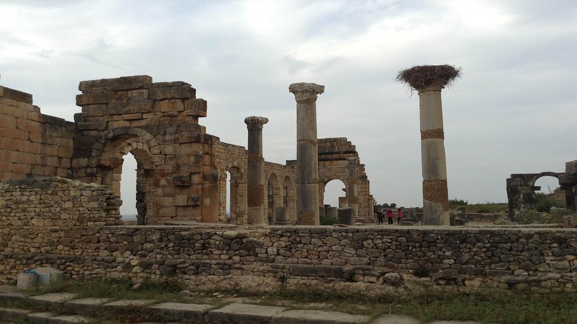 fez to Meknes Volubilis day trip