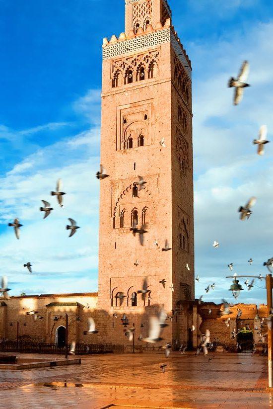 Marrakech Camel Sahara tour